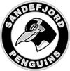 Sandefjord Penguins