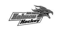 Holmen Hockey